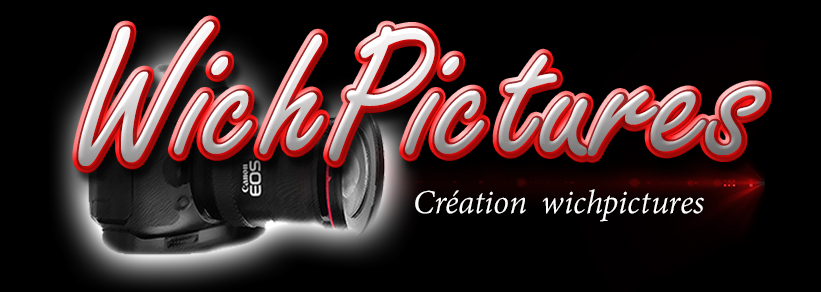 logo wichpictures (3)